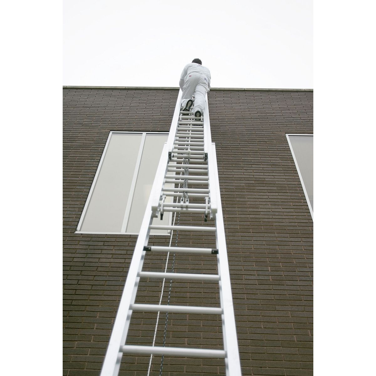 560 3 Extension Ladders Werner Us