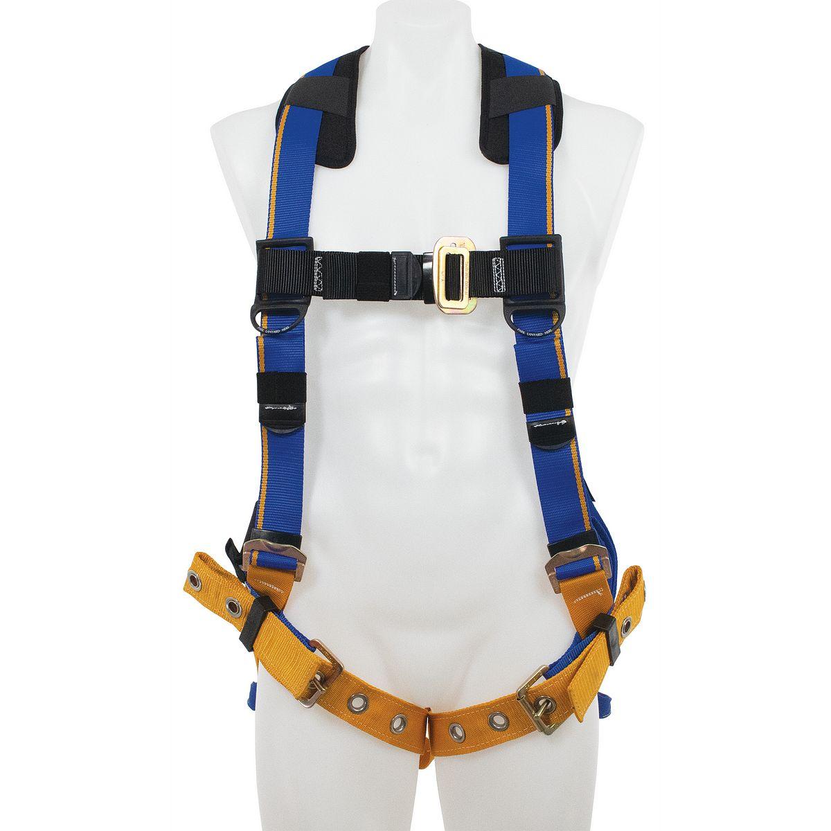 H2120_PI?crop=no&u=qlpvmu harnesses werner ladders
