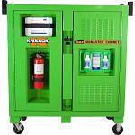 Model 139-SK-01 Safety Kage™ Cabinet, 59.4 cu ft
