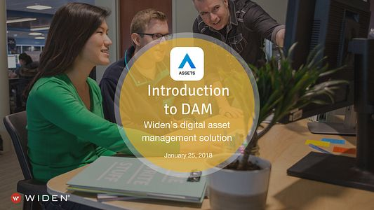 Introduction to DAM