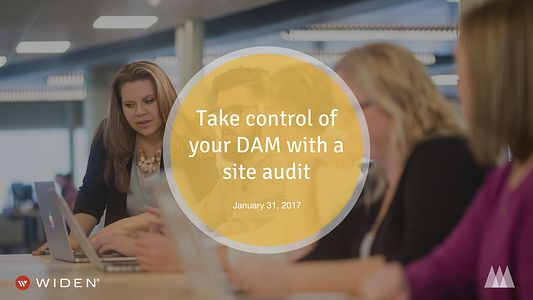 Take control of your DAM with a site audit