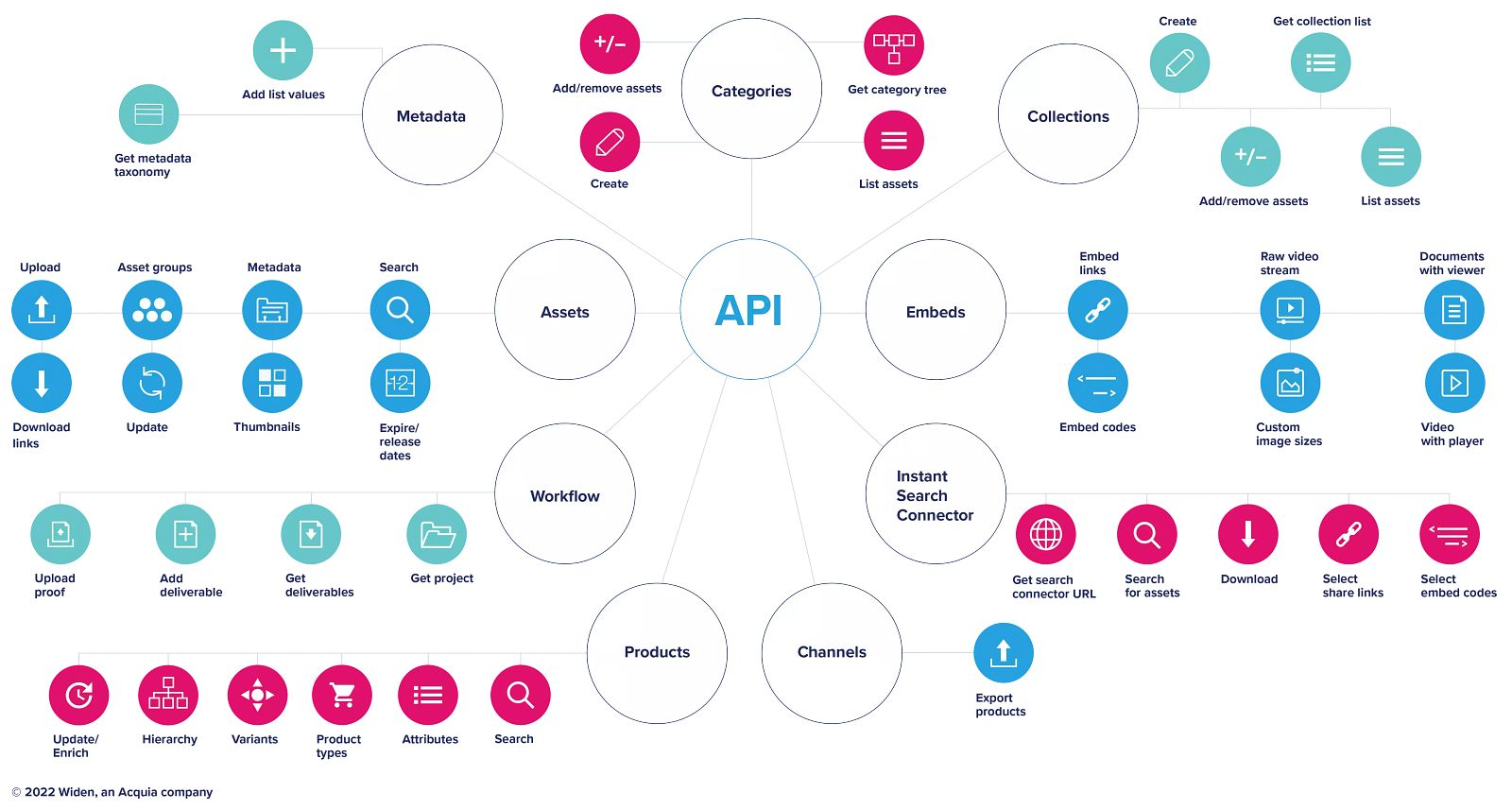 Graphic showing the different ways you can use the Widen Collective API