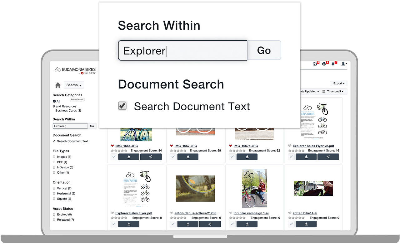 DAM Software and Search Document Text