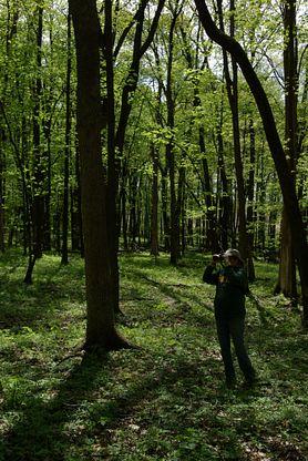 woman looks through binoculars in woods