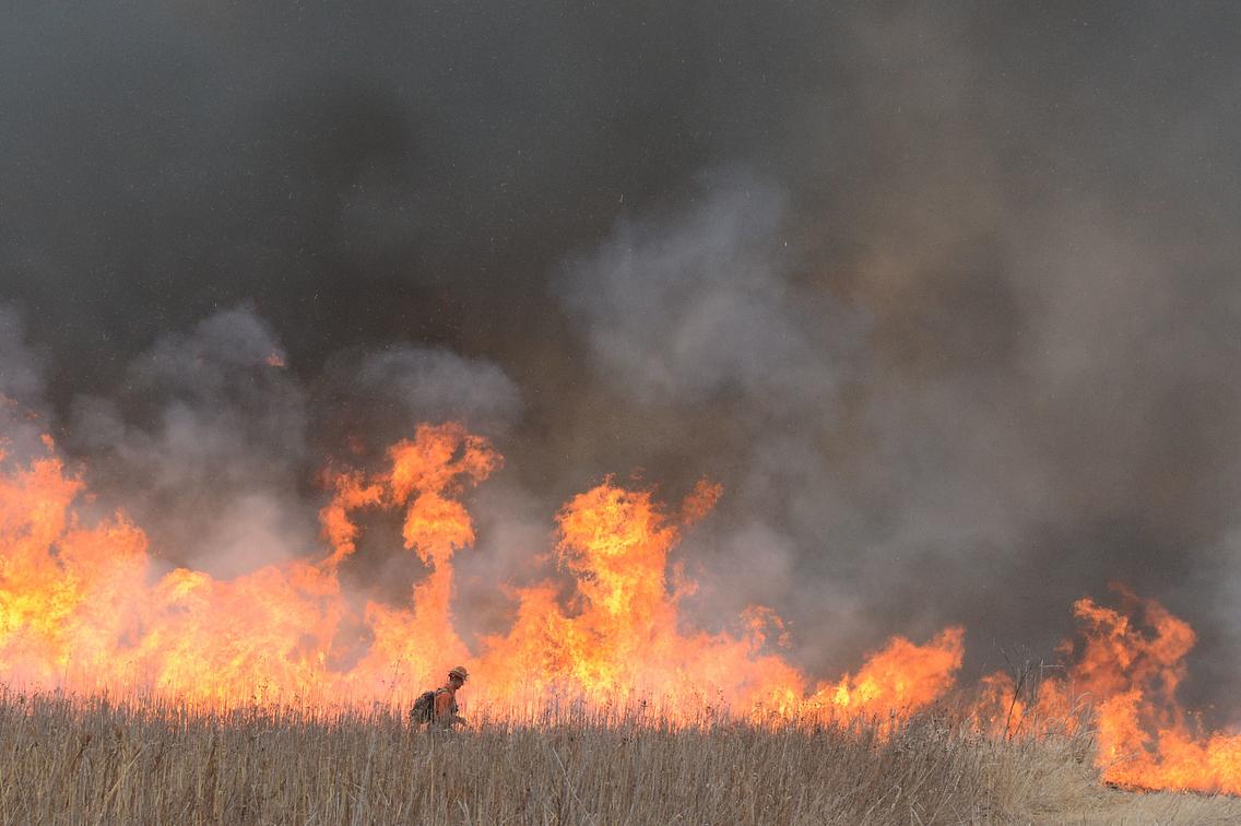 Wildlife biologist tending a large prescribed burn in a prairie area