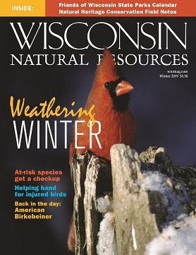 cover of Winter 2019 issue of WNR magazine