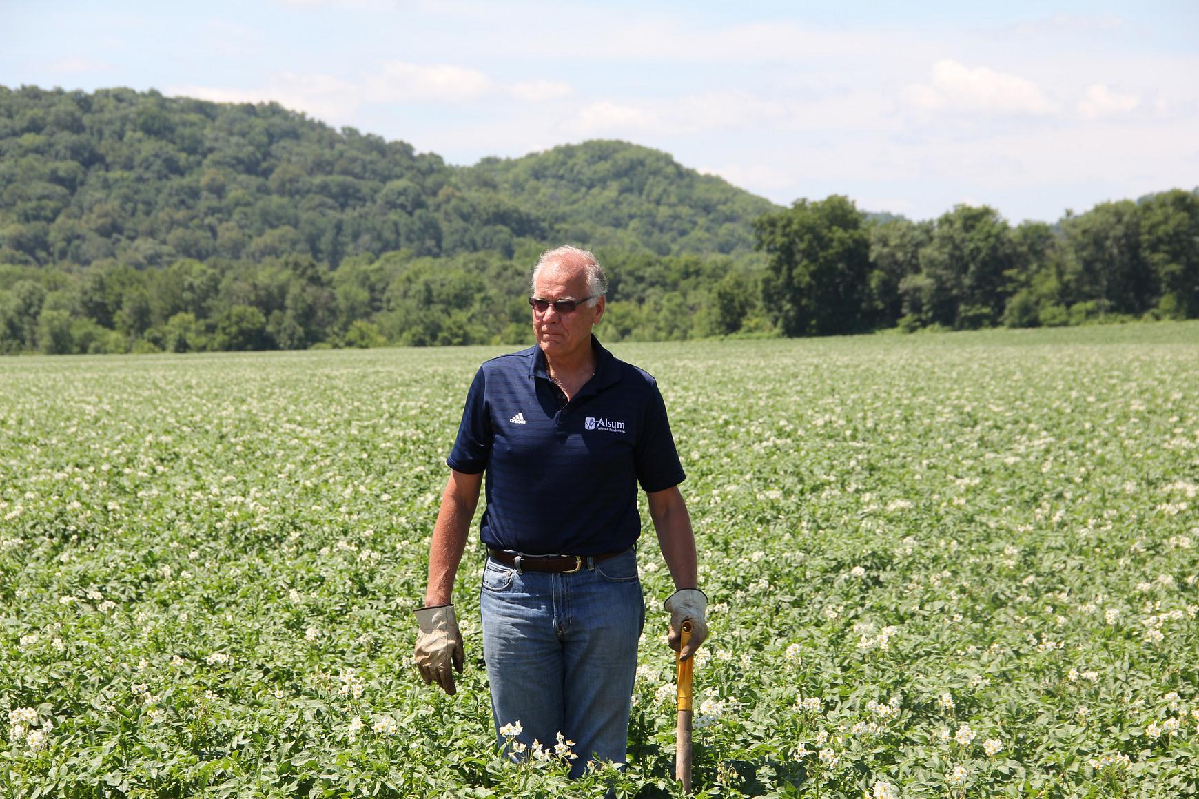 Photo of man standing in field of potato plants