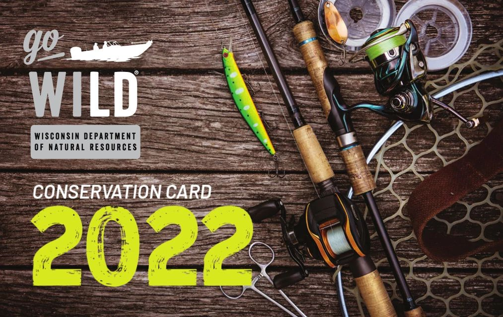 Go Wild Conservation Card front