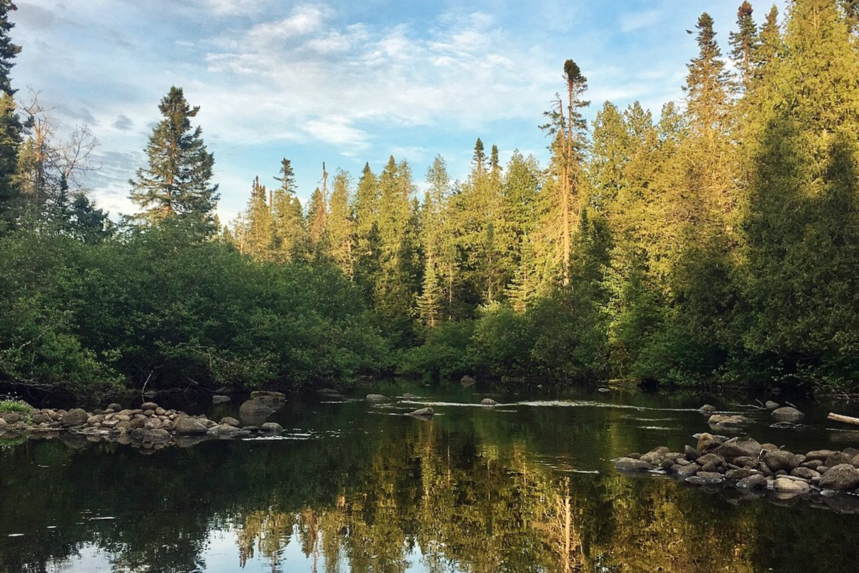 Peaceful summer photo of Brule River water reflecting blue sky and pine trees on its banks