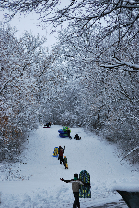 Several people sledding on a snow-covered hill
