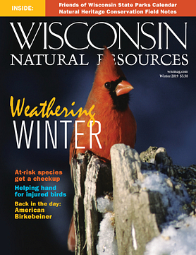 Wisconsin Natural Resources magazine Winter 2019 cover