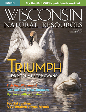 Wisconsin Natural Resources magazine Summer 2019 Cover