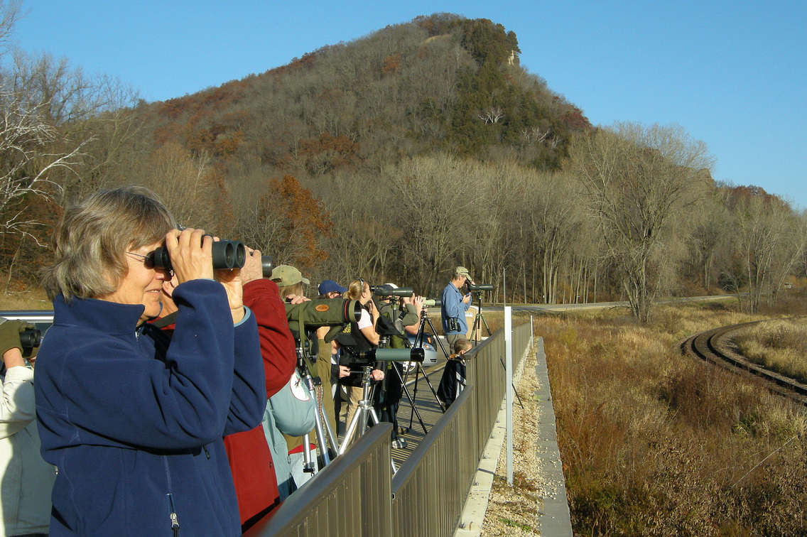 Group of people with binoculars and spotting scopes looking off in the distance