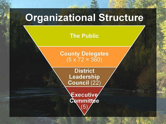 OrgStructure
