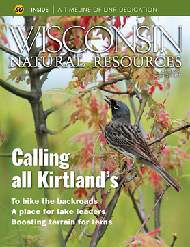 Wisconsin Natural Resources magazine Summer 2018 cover