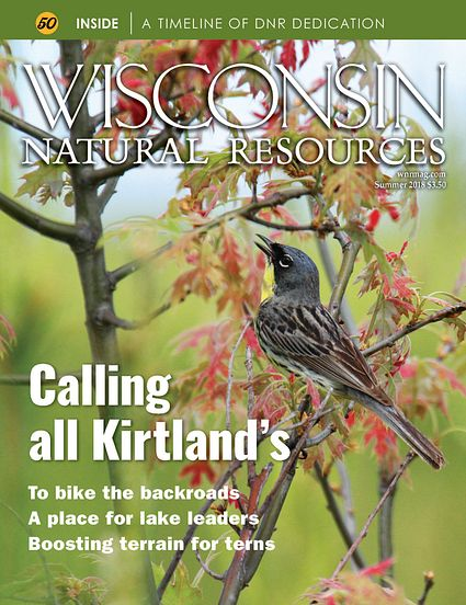 Summer 2018 WNR magazine cover with Kirtland's warbler
