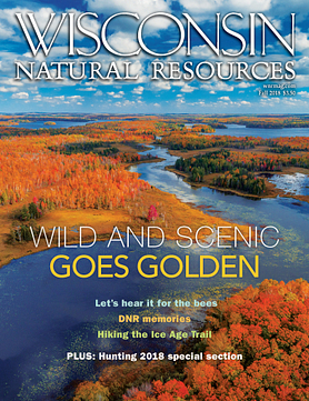 Wisconsin Natural Resources magazine Fall 2018 cover