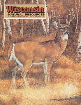 1980 WNR magazine cover with buck image