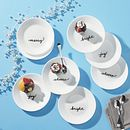 """Celebrate Christmas 6.75"""" Appetizer Plates , 8-pack"""