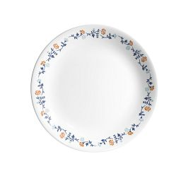 """Vibrant Gloria 8.5"""" Salad Plate"""