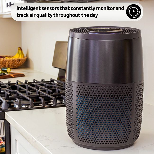 Instant™ Air Purifier, Small, Charcoal
