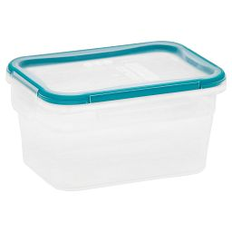 Total Solution™ Plastic Food Storage 5.02 Cup  Rectangle with lid on