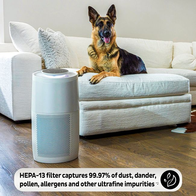 Instant™ Air Purification Replacement Filter - Large