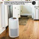 Instant™ Air Purifier, Medium, Pearl
