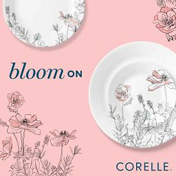 Bloom on text with poppy print plates and floral graphic