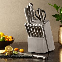 Insignia Steel 13-pc Block Set on the Counter